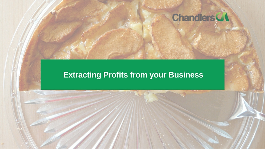 guide to extracting profits from your business