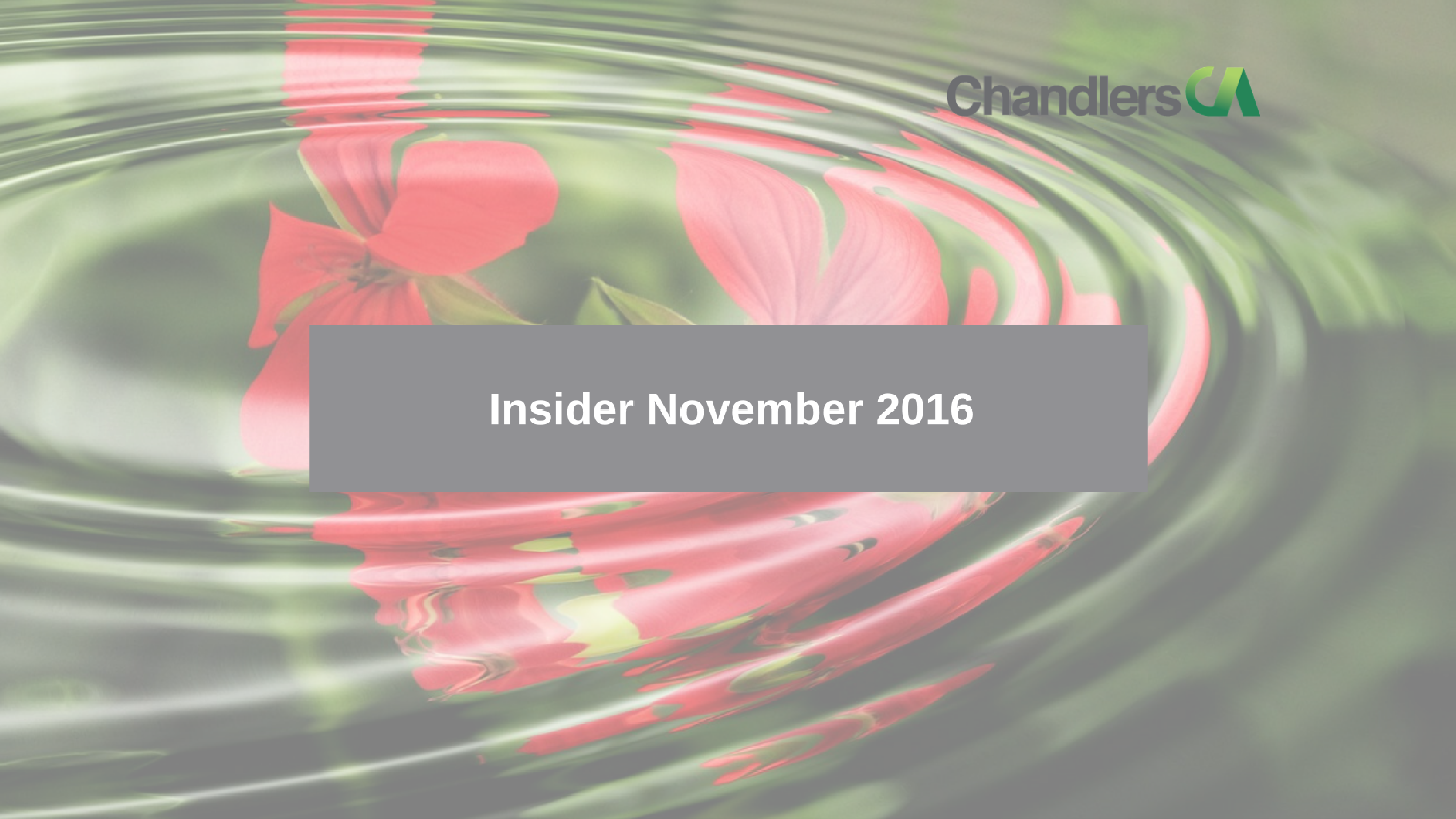 insider tax guide for november 2016