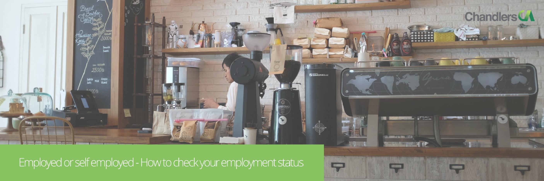 Employment status - employed or self employed