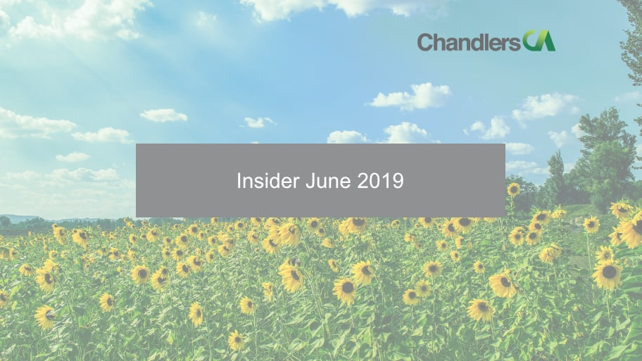 Insider June 2019