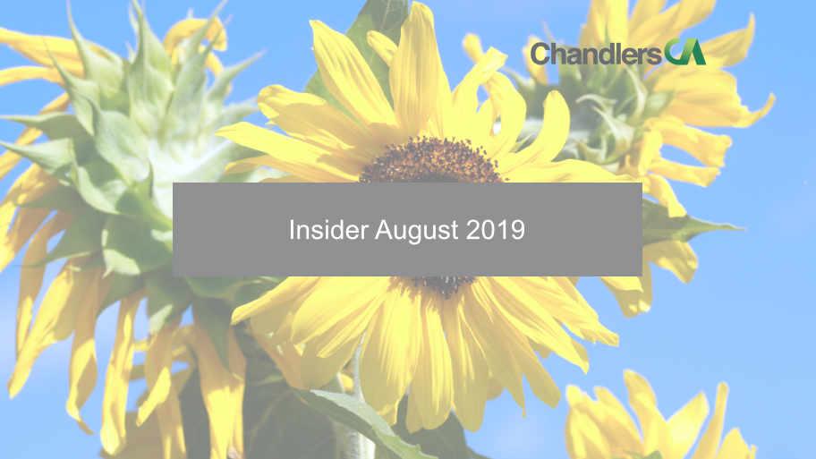 Insider August 2019