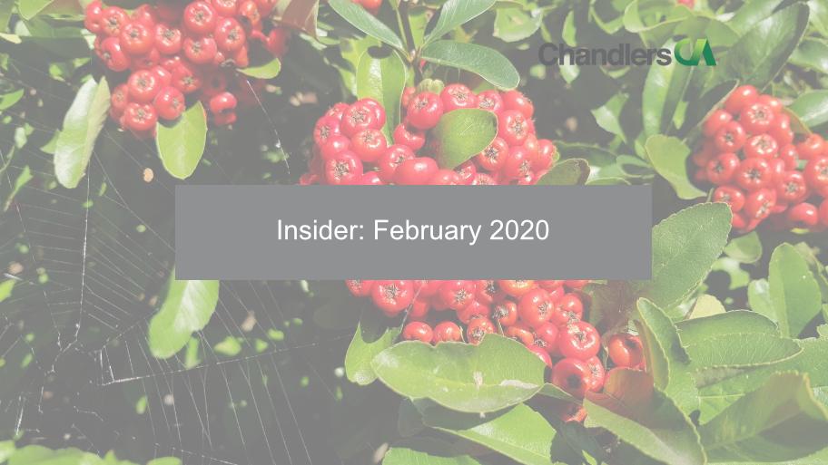 Insider: February 2020 - Chandlers CA