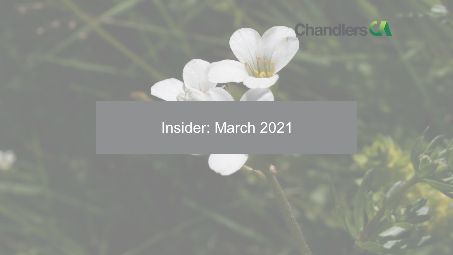 Insider March 2021